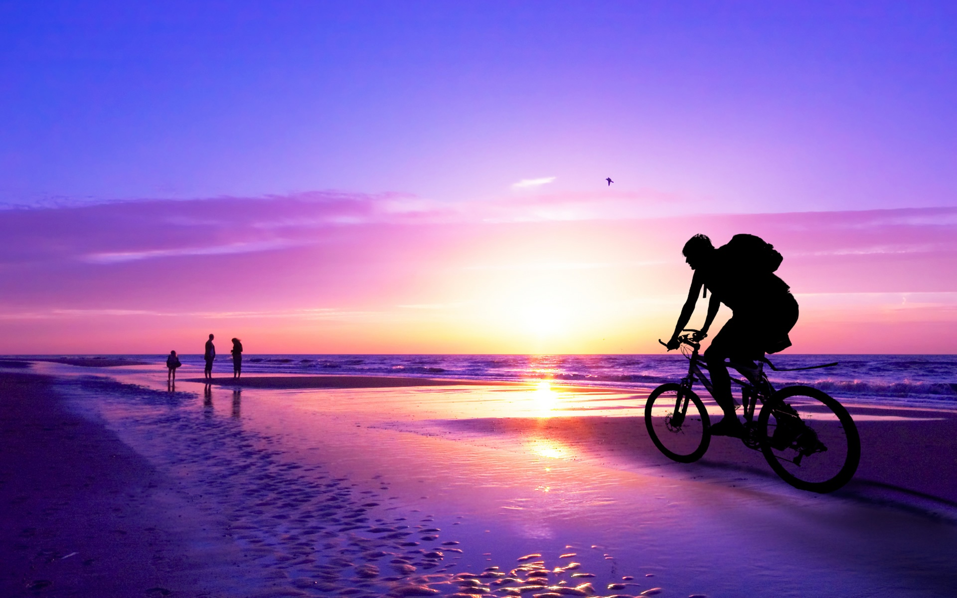 bicycle on sea beach wallpapers - 1920x1200 - 454569