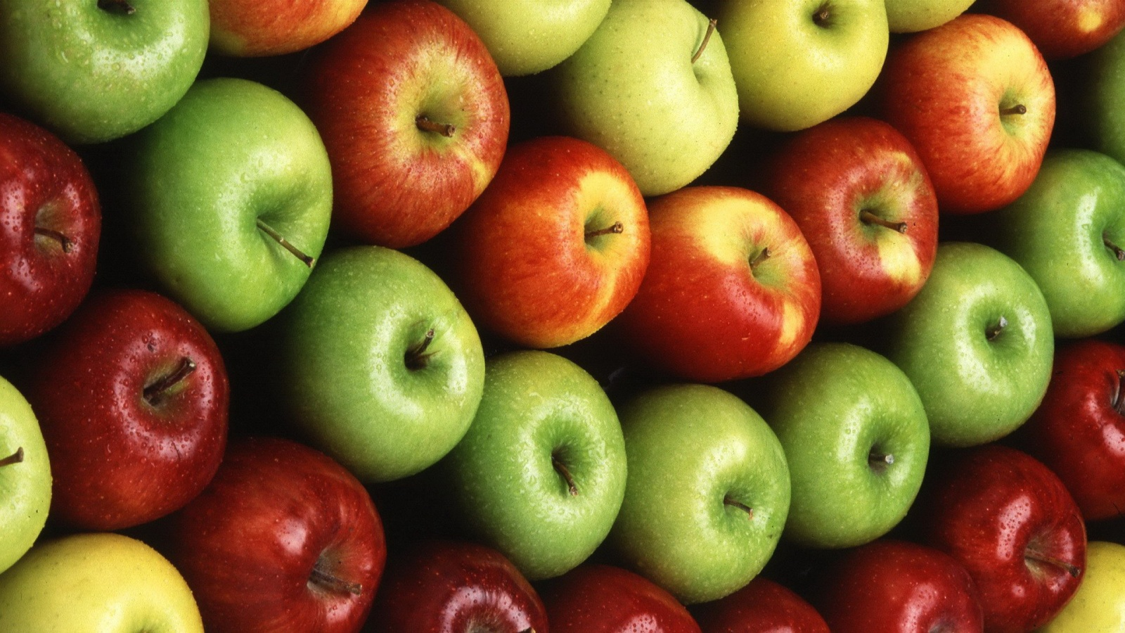 colorful apple fruit wallpapers 1600x900 522348