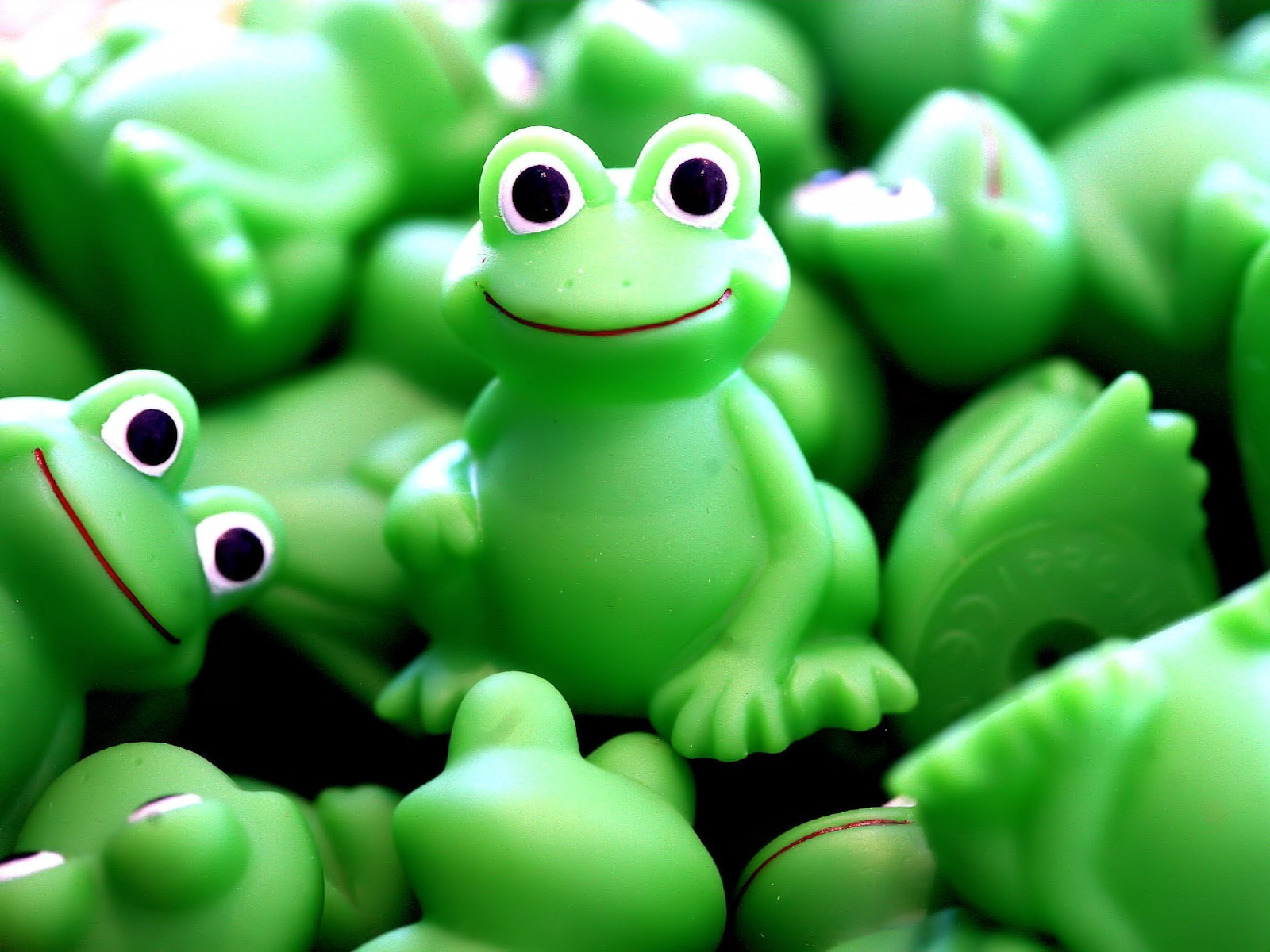 Crazy frogs 1600 x 1200 download close