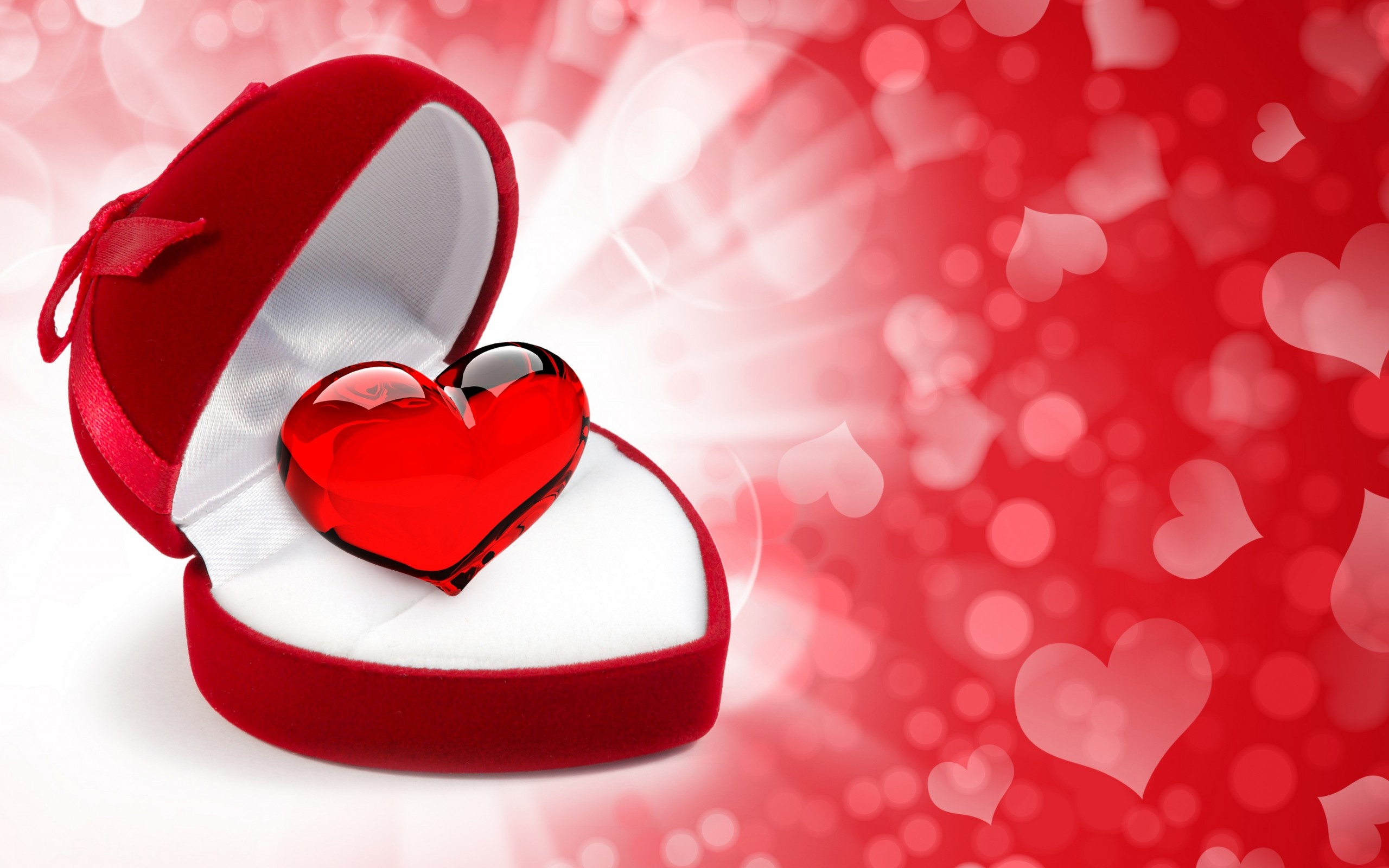 Flare Hearts In Gift Box Wallpapers  2560x1600 541734