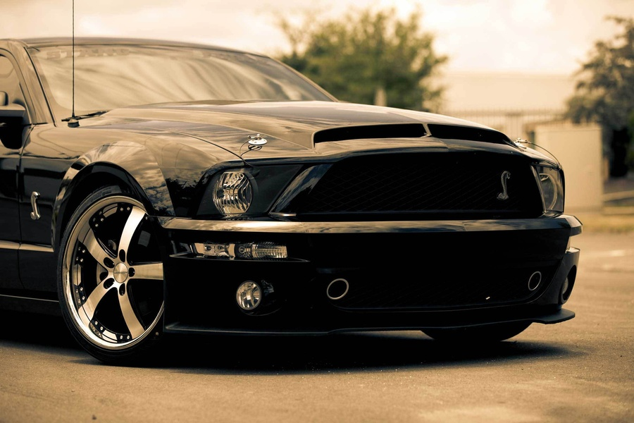 Ford Mustang Shelby Gt500 Cobra Black Wallpapers 900x600