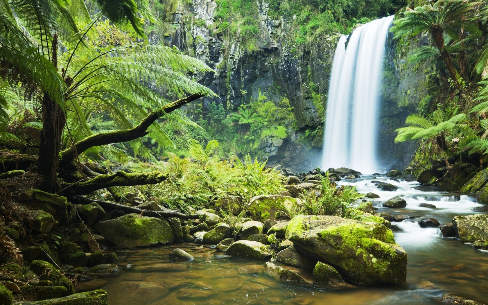 Forest River Waterfall  1680 x 1050  Download  Close