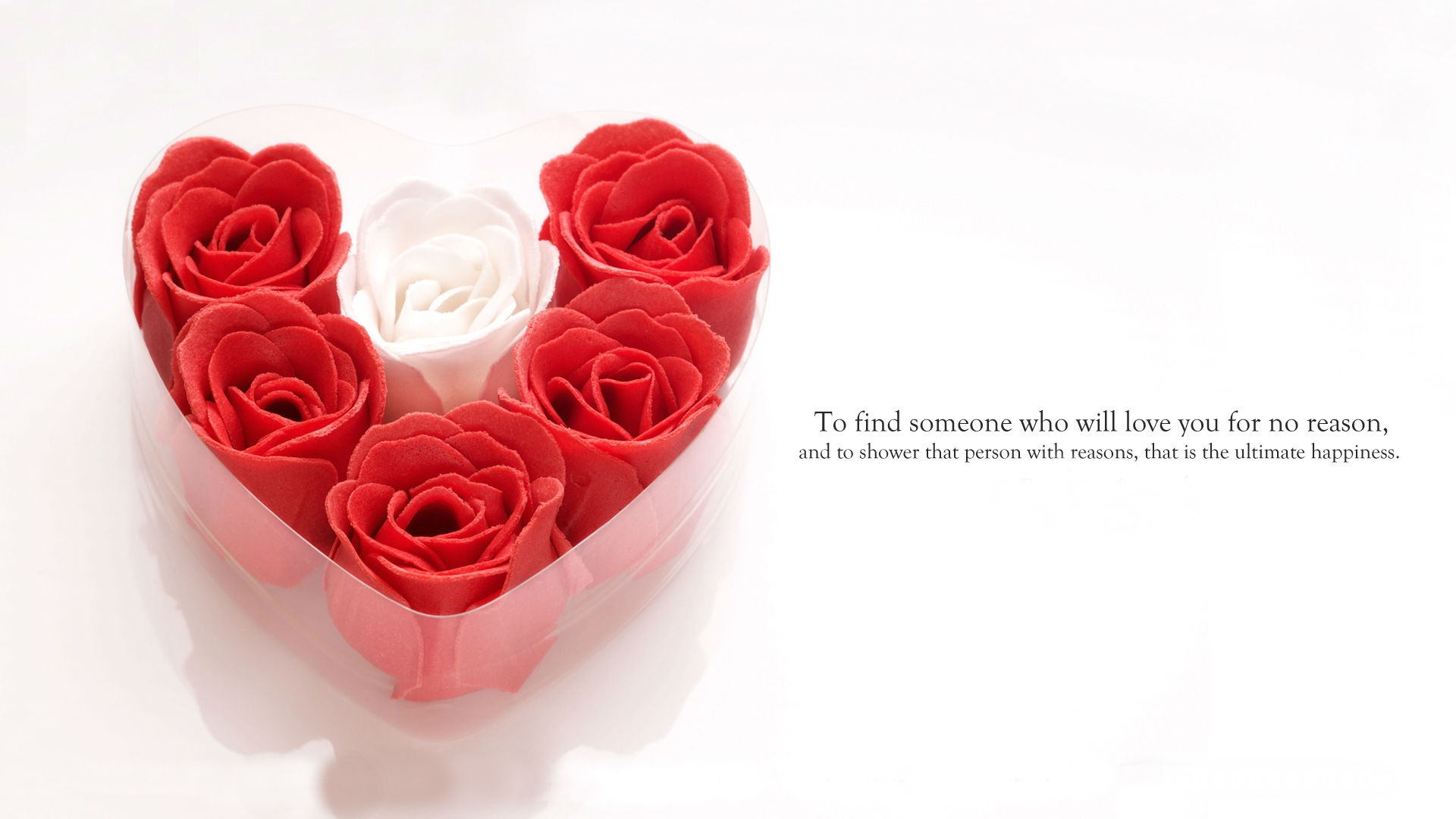 Happiness Love Flowers | 1920 x 1080 | Download | Close