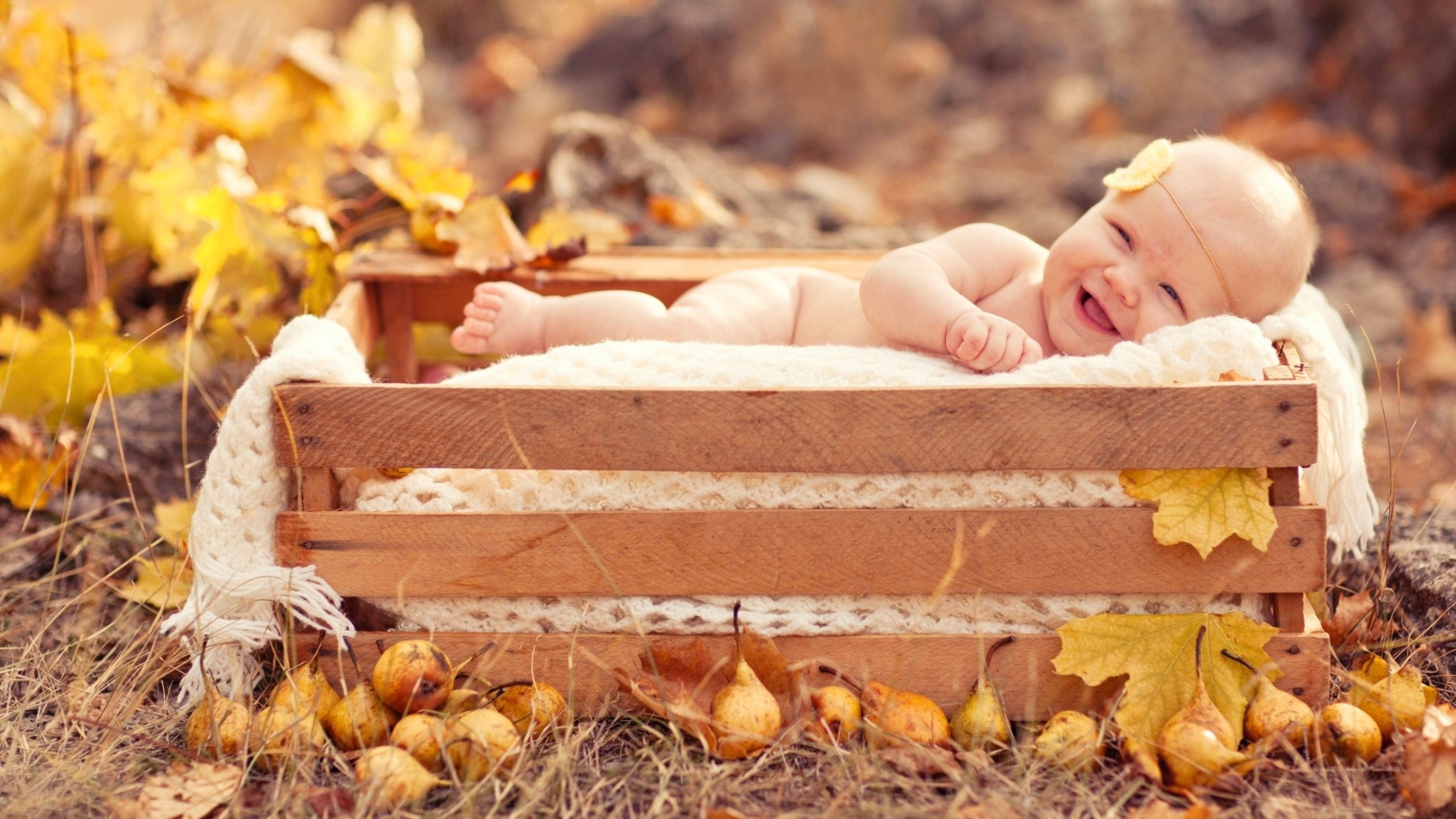Happy Boy In Wooden Box Wallpapers 2400x1350 899442