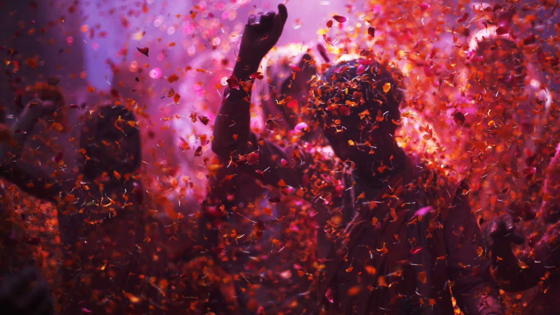 Holi Spring Festival Of Colors Celebration Wallpapers 1920x1080