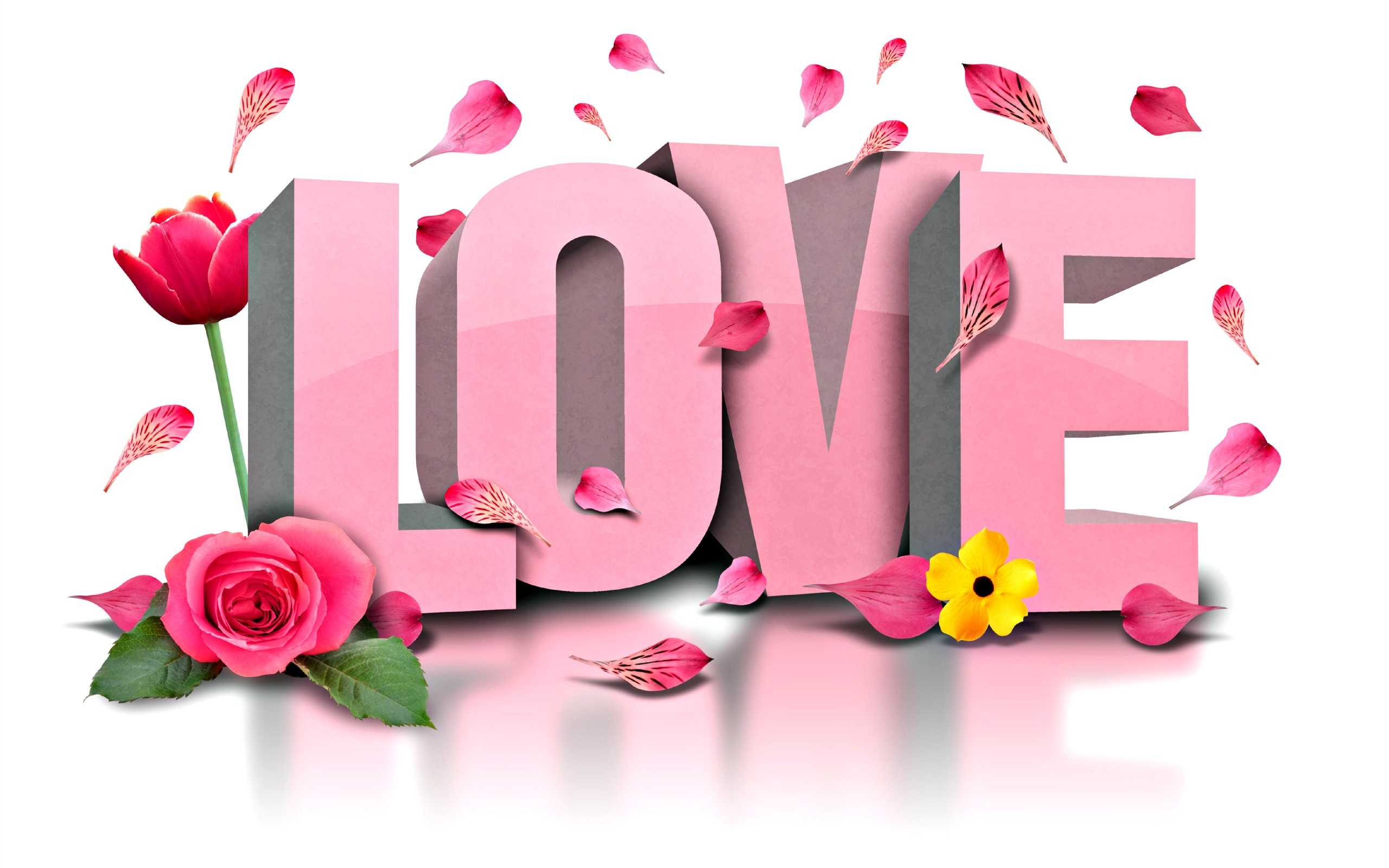 Love Flower Wallpaper Images : Love Flowers Wallpapers - 2560x1600 - 577941