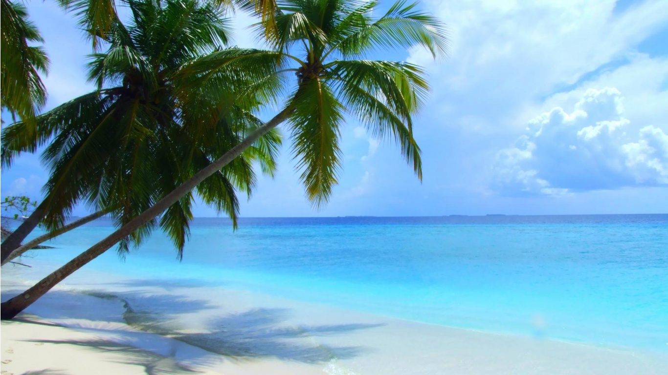 Maldives Beach Scenery Wallpapers - 1366x768 - 303543