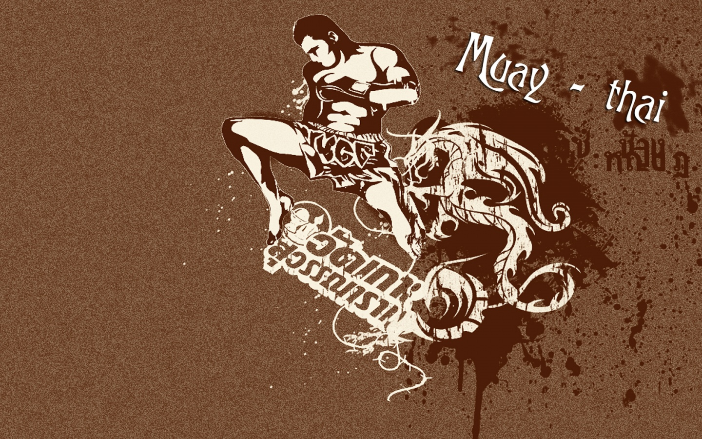 Muay Thai Wallpapers 1440x900 675380