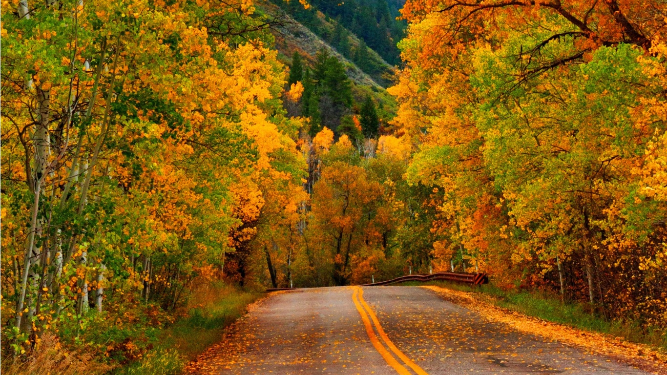 Nature Autumn Forest Park Road Wallpapers - 1366x768 - 732622