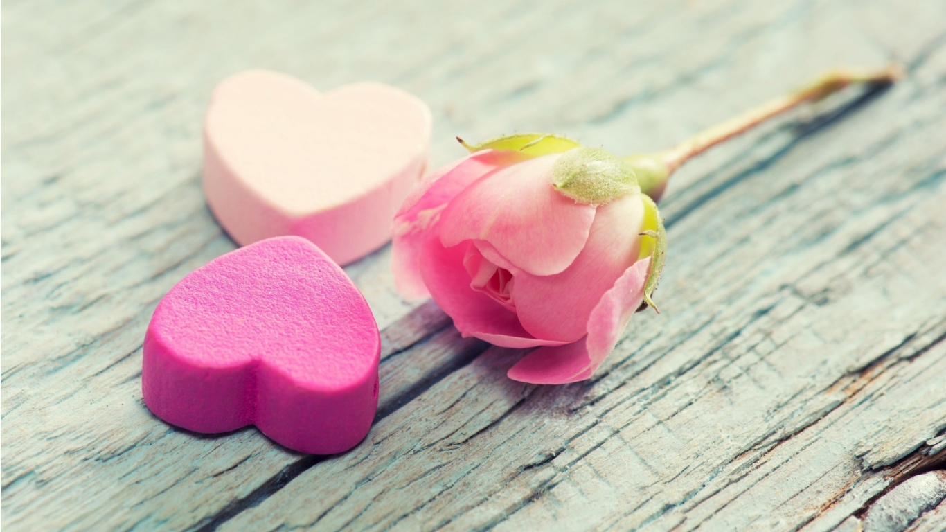 Pink Rose Heart Pink Heart And Rose Flower Pink Roses And Hearts