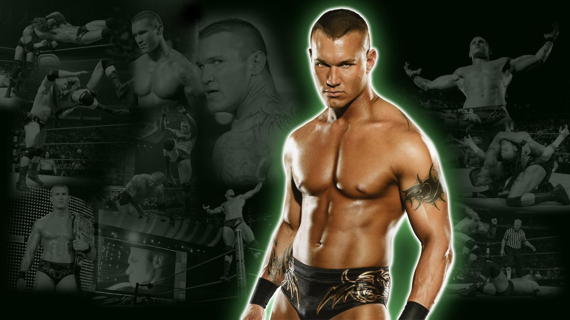 Randy Orton WWE Fighter