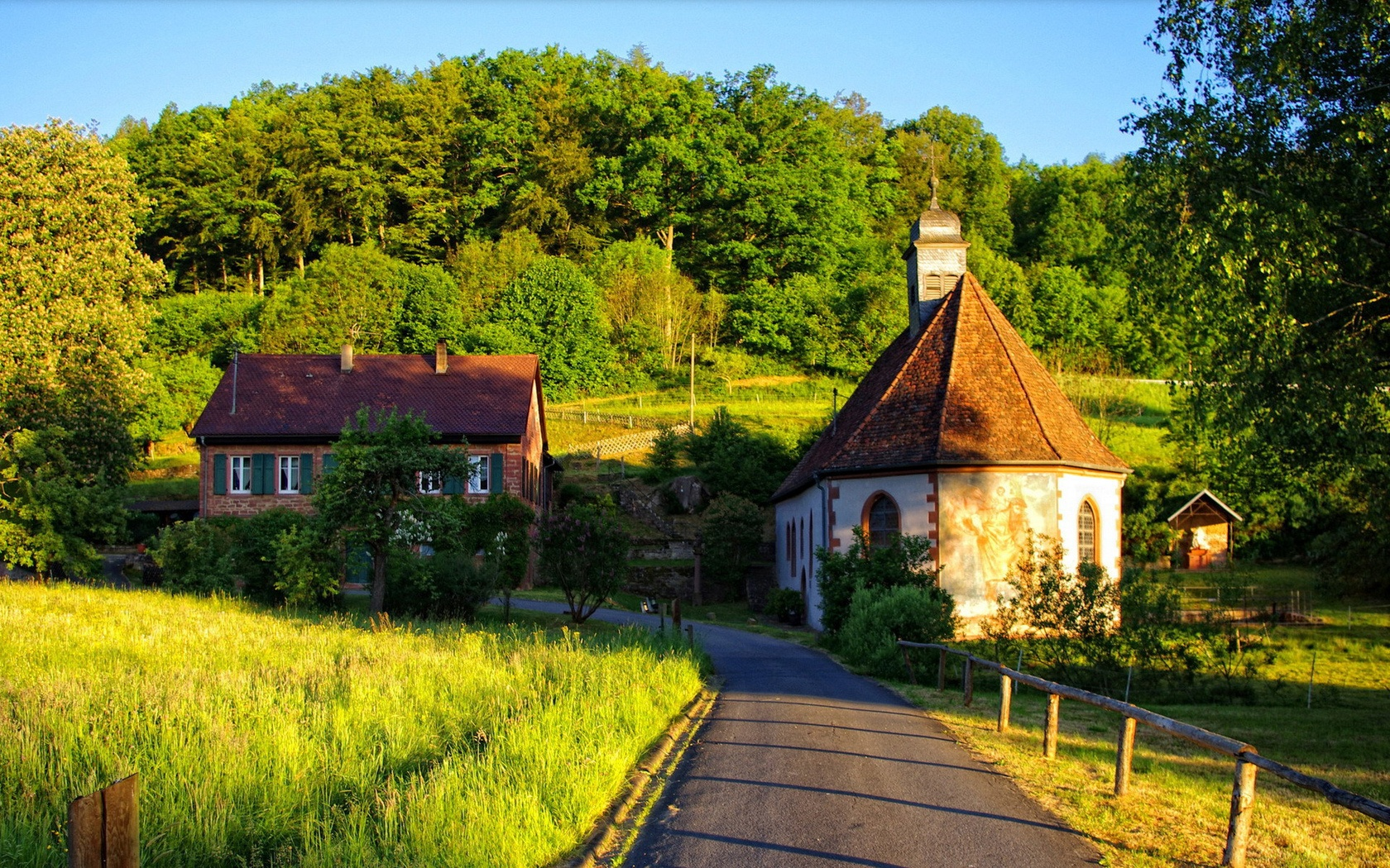 Summer Houses In Forest