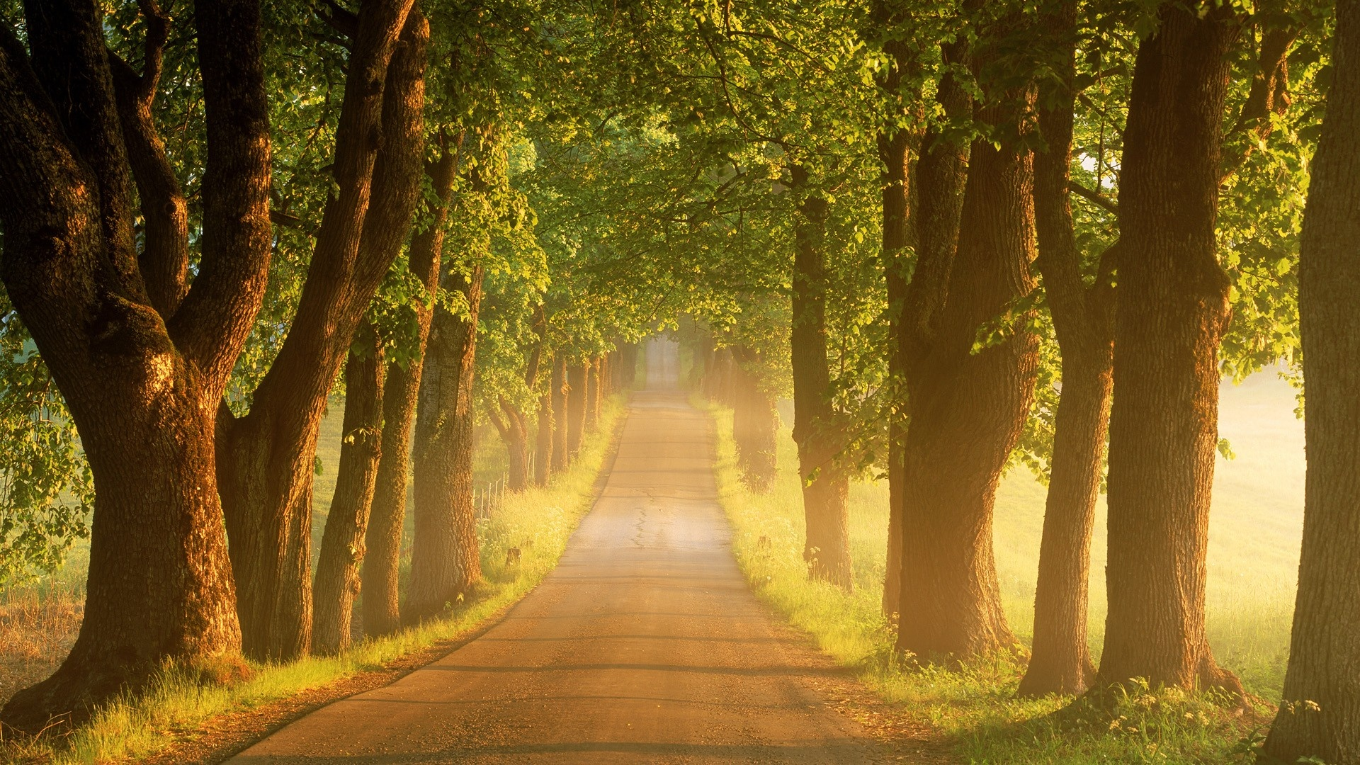 Country Road iPhone Wallpaper  Travel iPhone Wallpapers