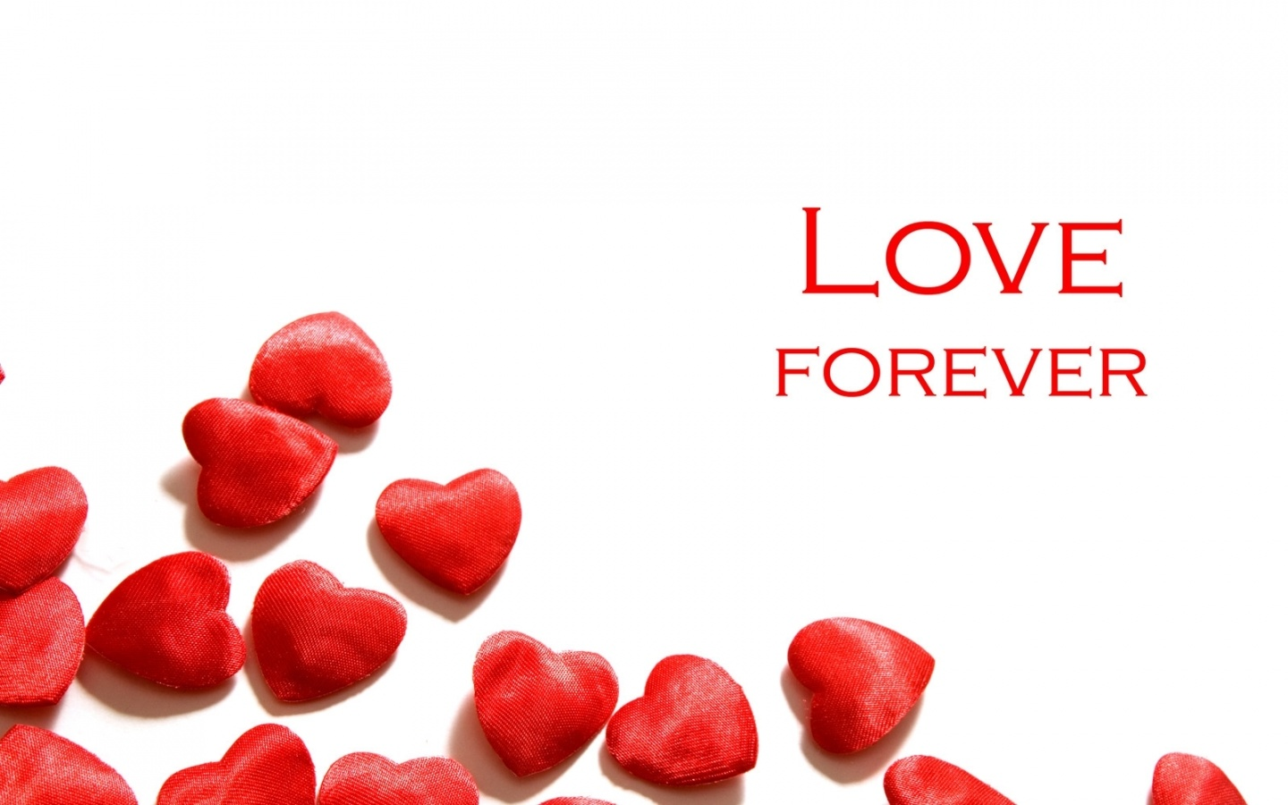 Valentines Day Love Forever Wallpapers 1440x900 229281