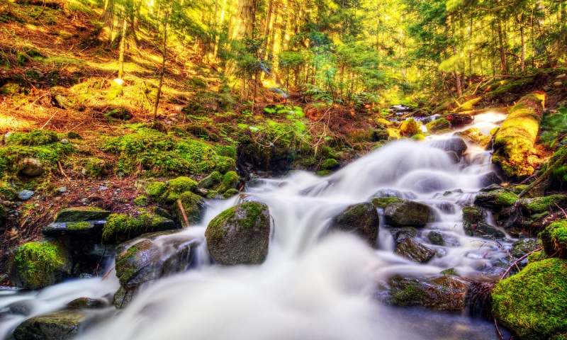 Water Fall Wallpaper | 800 x 480 | Download | Close: bhmpics.com/view-water_fall_wallpaper-800x480.html
