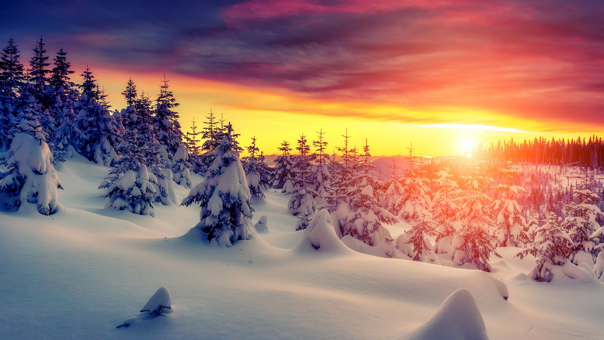 winter forest sunset sky snow wallpapers - 2048x1152