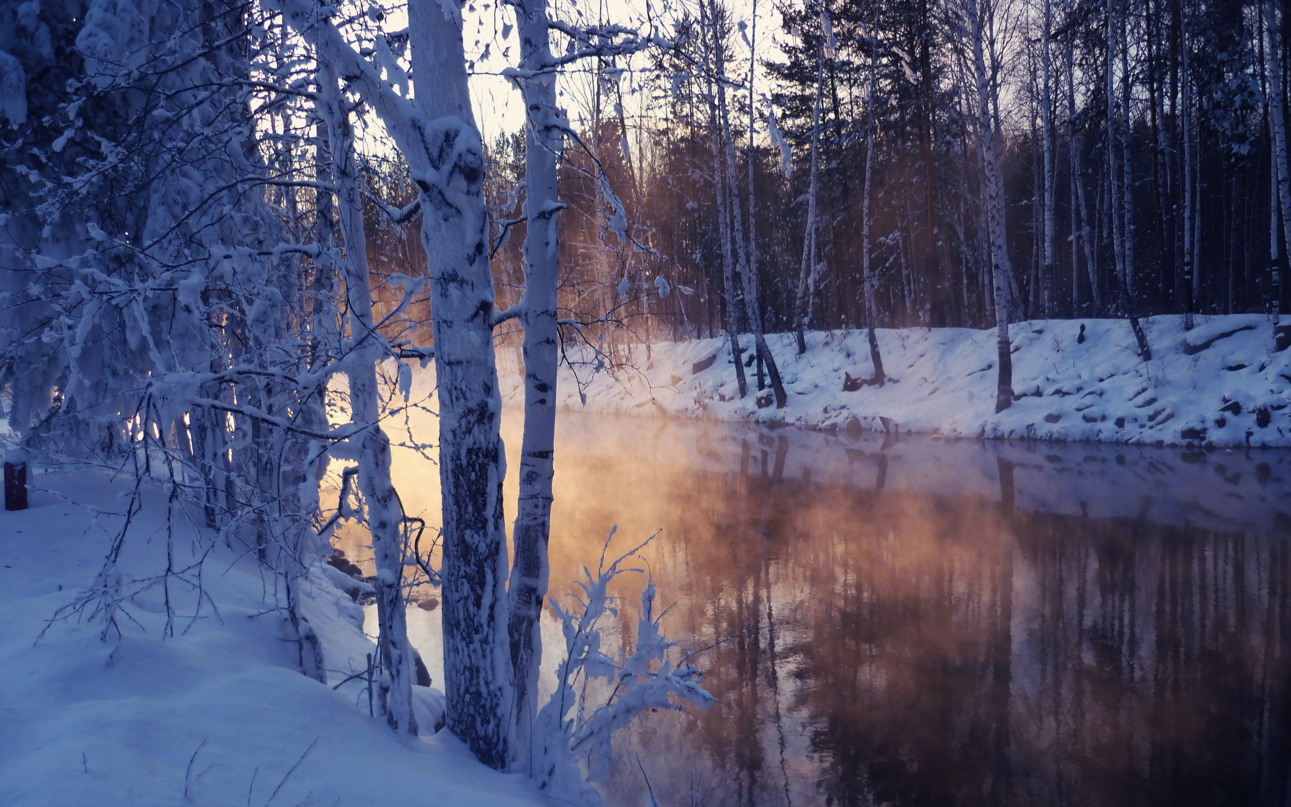 winter landscape with snow covered tree lake wallpapers