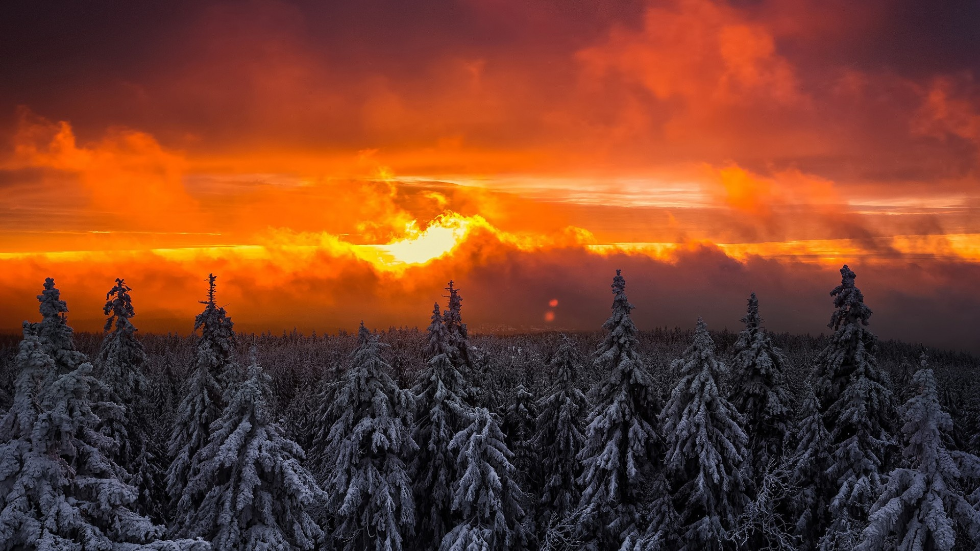 winter orange sunset forest snow wallpapers 1920x1080