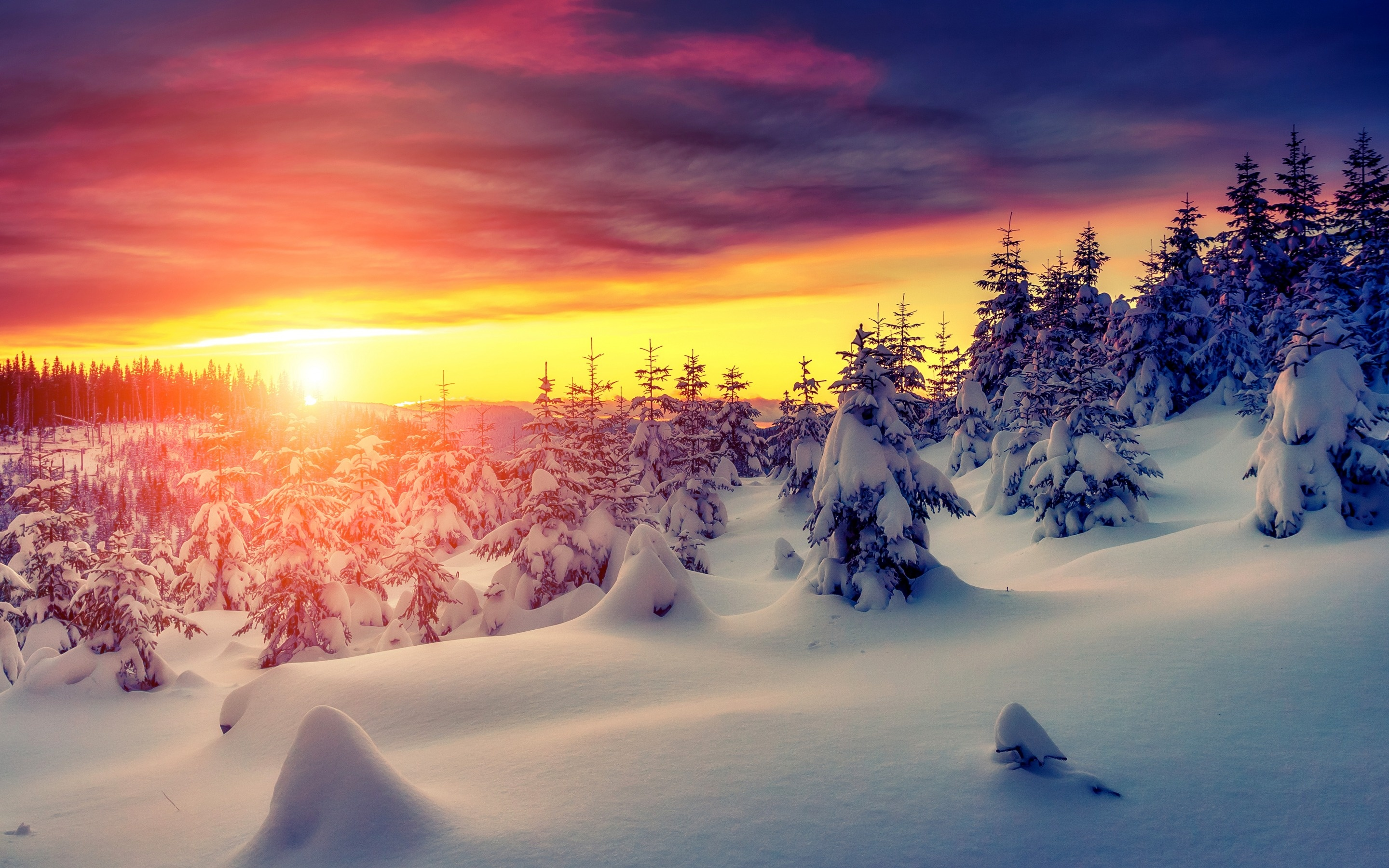 winter snow sunset landscape wallpapers - 2880x1800 - 1581678