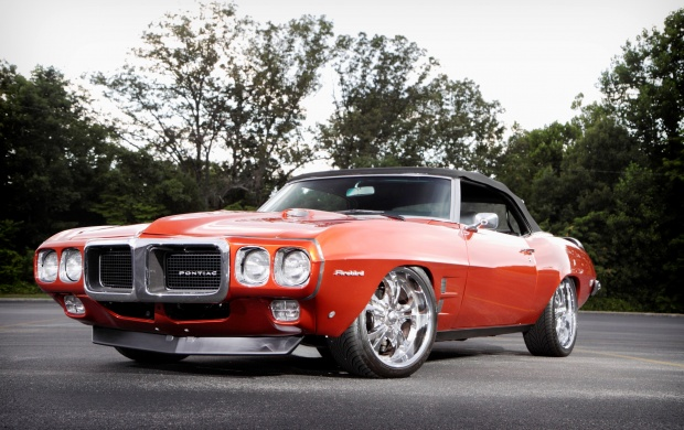 1969 Firebird (click to view)