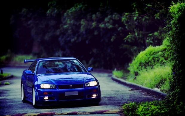 2002 Nissan Skyline R34 GT-R (click to view)