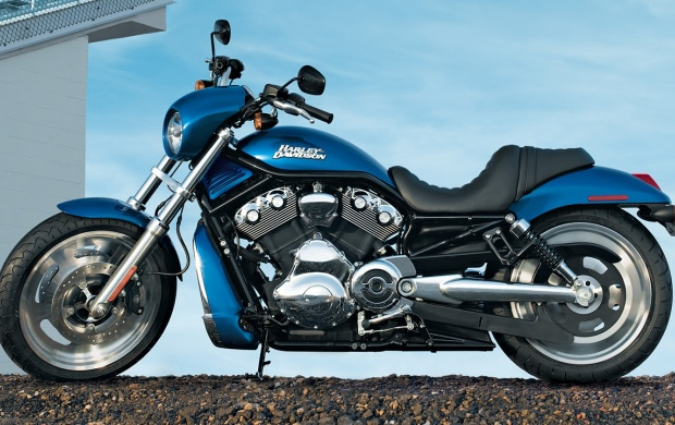 2007 Harley Davidson VRSCD Night Rod (click to view)