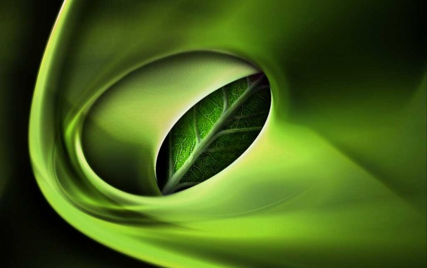 3D green leaf (click to view)