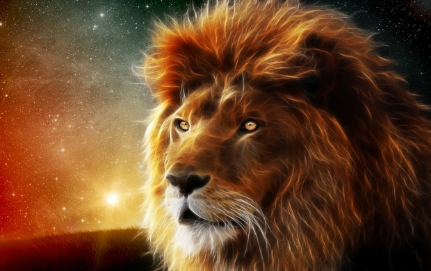 3d Lion Wallpapers
