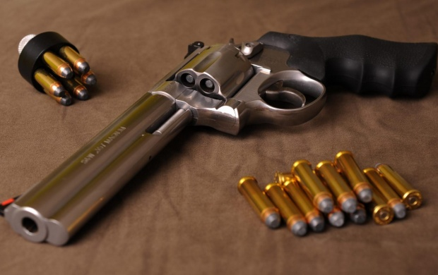 500 S&W Magnum Revolver (click to view)