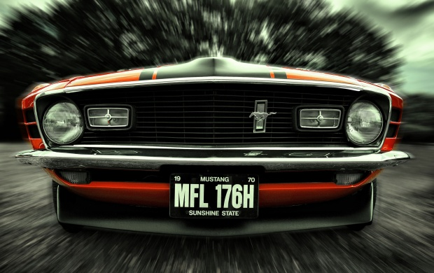 70s Mustang (click to view)