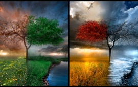 All 4 Seasons