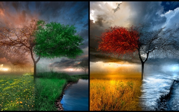 All 4 Seasons (click to view)
