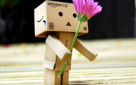 Amazon Box Giving Pink Flower