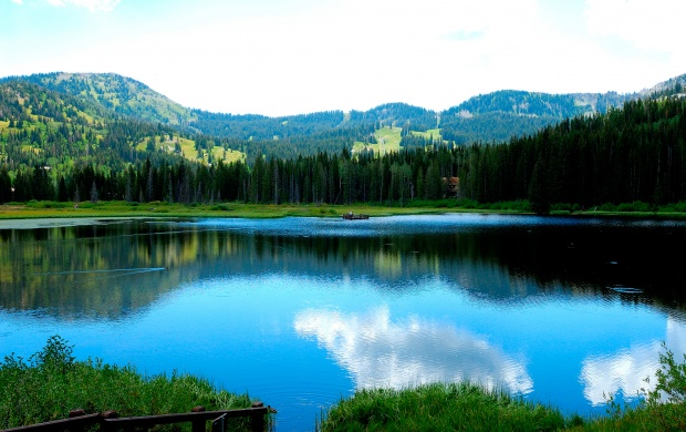 Amzing view of a lake and trees (click to view)