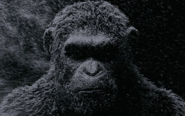 Andy Serkis In War For The Planet Of The Apes 2017