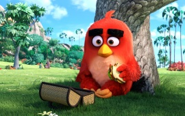 Angry Birds Hollywood Movie Stills