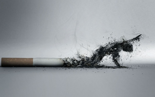 Anti Smoking (click to view)