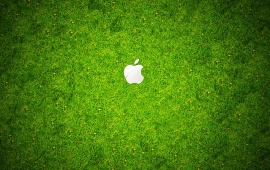 Apple Green Grass