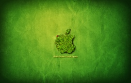 Apple Think Green