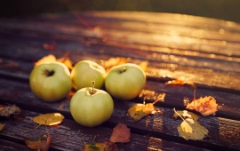 Apples Harvest Autumn