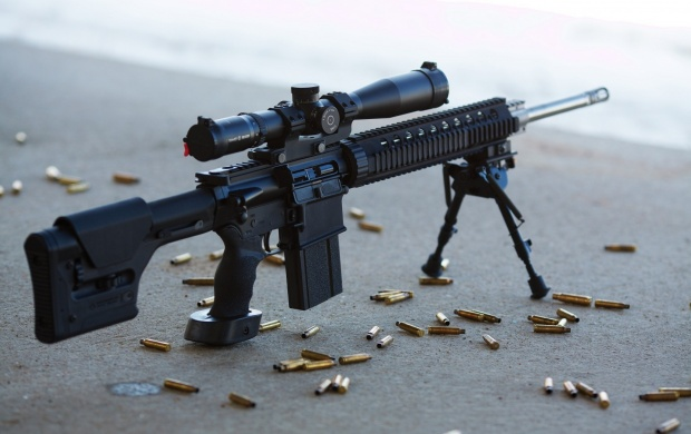 Armalite AR-10 Gun (click to view)