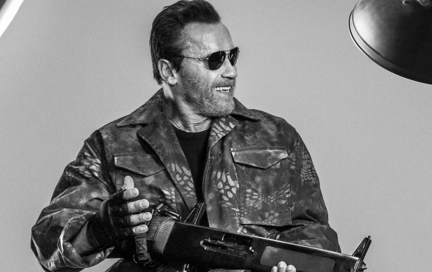 Arnold Schwarzenegger In The Expendables 3 (click to view)