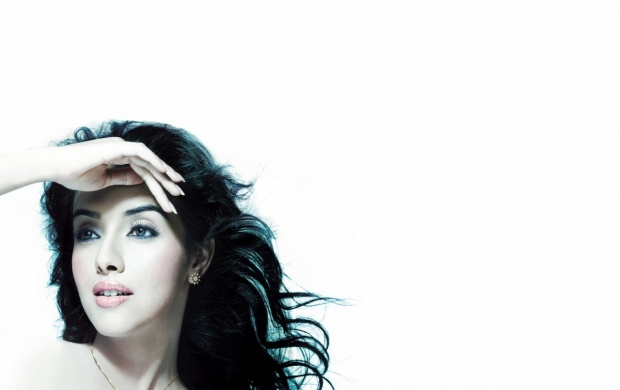 Asin High Definition (click to view)