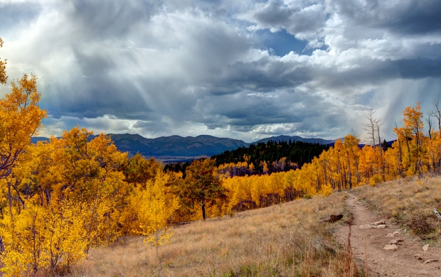 Aspen Trail (click to view)