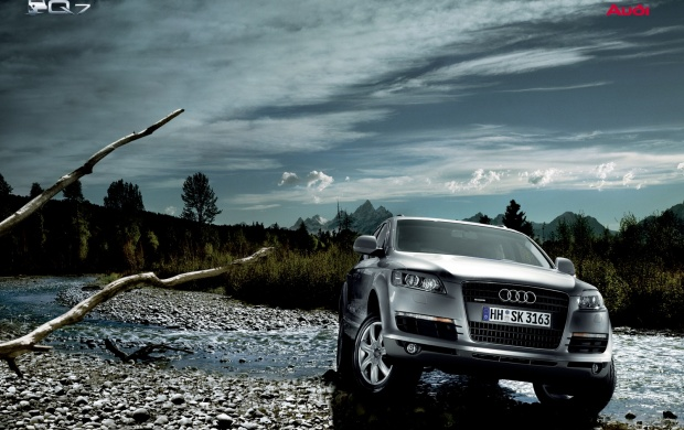 Audi Q7 in natural trees (click to view)