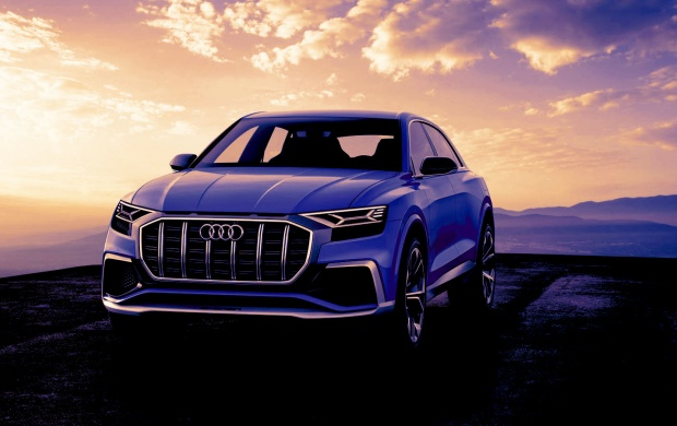 Audi Q8 Concept (click to view)
