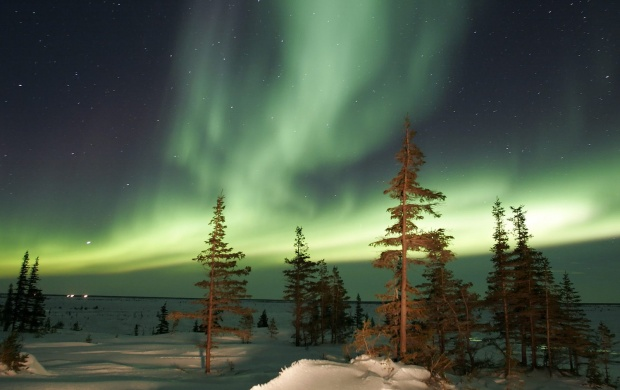 Aurora (Astronomy) (click to view)