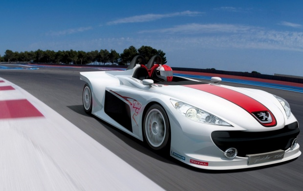 Auto Racing Peugeot Spider 207 (click to view)