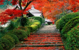 Autumn Garden Staircase