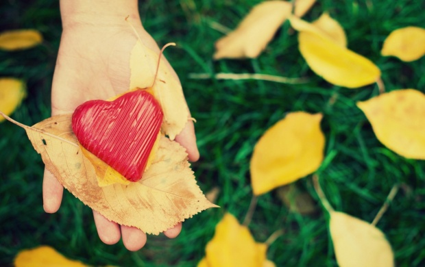 Autumn Leaves On Red Heart (click to view)